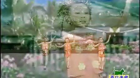 少儿舞蹈视频    两只老虎