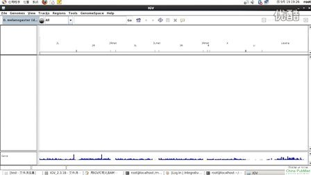 生物信息学讲座-第14讲-IGV可视化BAM文件