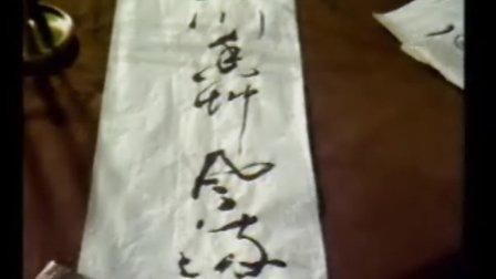 中央电视台书法教育讲座【书法技法之草书技法】(上)