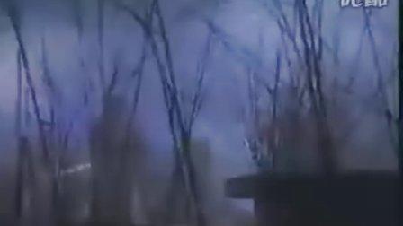 《郑伊健》金蛇郎君20集全07国语VCD