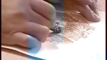 四年级美术优质示范课视频下册《藏书票》
