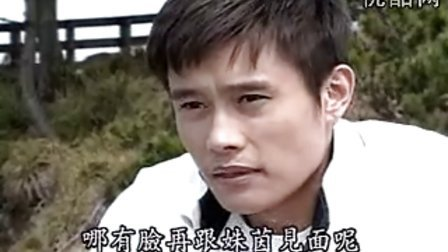 洛城生死恋15 国语中字
