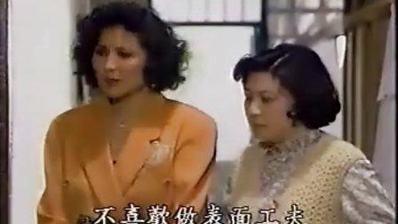 银狐12 国语VCD