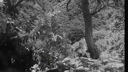 优秀抗战反特故事影片《古刹钟声》,〔下部〕;〈长影1958年出品〉