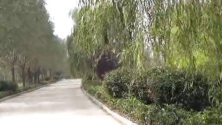 全国最大的人工湿地黄山湿地公园风光视频
