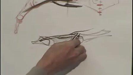 [手部解剖素描]1