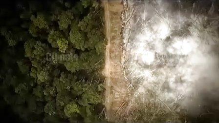 绿色和平保护亚马逊十年艰辛历程