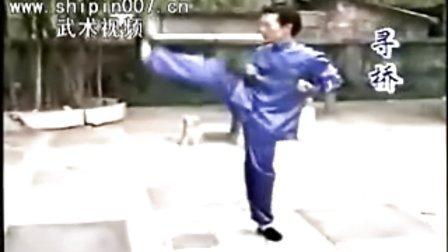 台湾版经典咏春拳教学