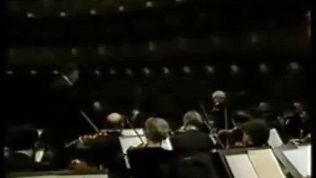 勃拉姆斯大提琴、小提琴二重奏(2) 马友友,斯特恩演奏 祖宾·梅塔指挥
