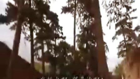 飞狐外传DVD国语