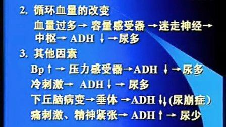 中国医科大学【生理学视频】37