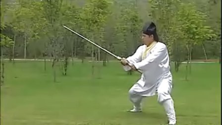 武当势剑5
