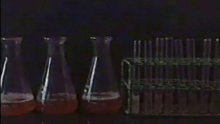 培养基的配置和无菌器材的制备