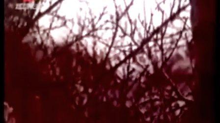 动画《大奖章》(1960年)(木偶)