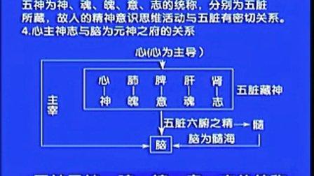 14《中医基础理论》五脏:心的生理功能(二)、心的生理特征