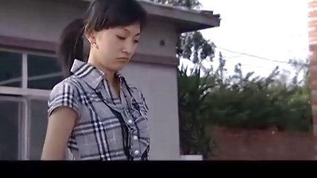 电视剧:《乡村名流》第13集 2009热播农村题材喜剧