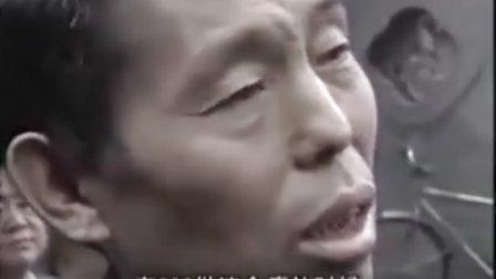 黄帝内经[第一部 医史篇]第14集:妙手回春(当代中医名家医案)