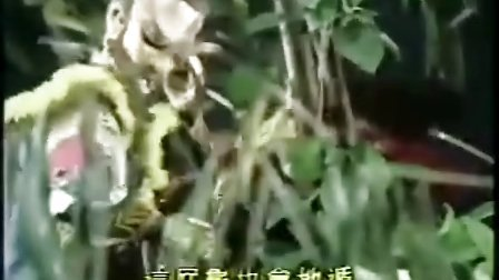 霹雳烽云15