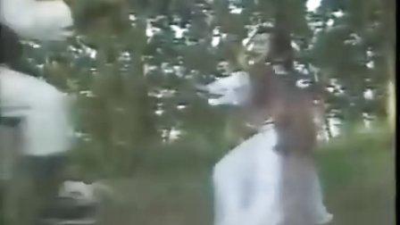 《金剑雕翎》[台湾86年版]第27集