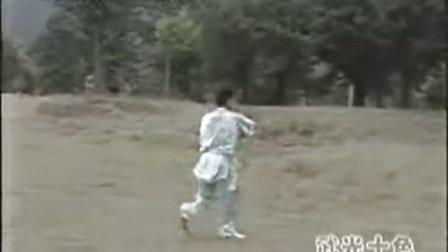 【中国武术段位制教材】长拳13