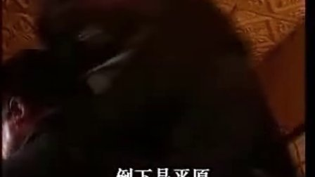 韩红 野火春风斗古城