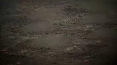 【幻樱字幕组】【★4月新番】苍天航路 第07话