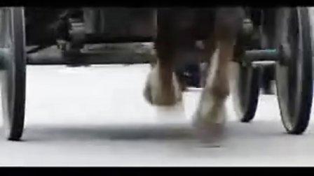 电视剧幸福花开片段1