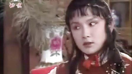 【燕园话红楼】第三讲 曹立波:寒塘鹤影渡湘云 芳情雅趣言妙玉