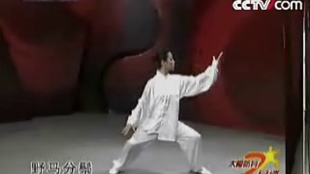 【侯韧杰  TaiJi  教学篇】之 CCTV10太极防身七日谈8  连载中...