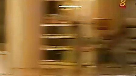 [新加坡] 宝家卫国 08
