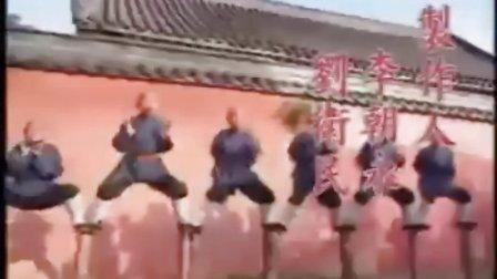 武林奇缘(陈法蓉 林芳兵版)--情定少林
