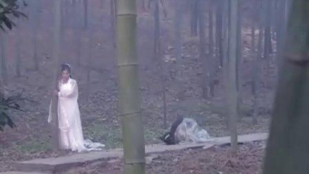 新白蛇传 第30集