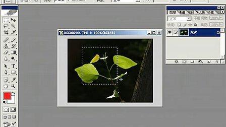 Fhotoshop从头学起视频Photoshop从头学起第05集