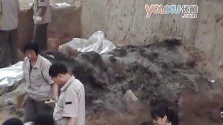 [拍客]现场揭秘24年后兵马俑最新挖掘 再现2000年地宫军队