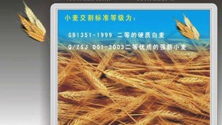 期货:郑州交易所商品介绍