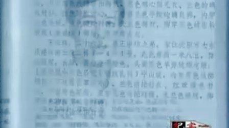 """警匪侦破十大犯罪案件第一部东北""""二王"""