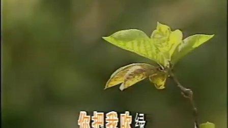 儿歌-小草