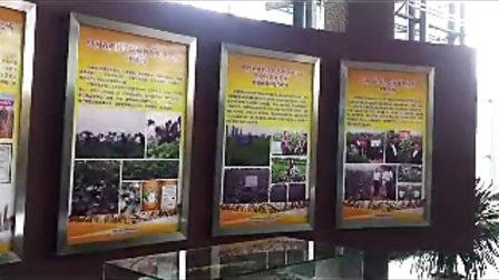 第十七届农交会举行农业科技成果转化签约仪式