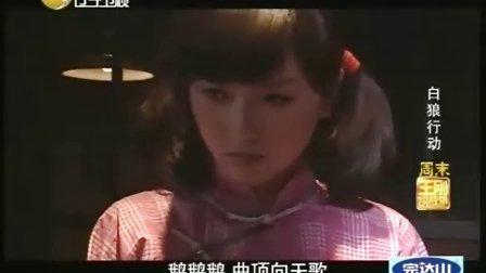 王刚讲故事20091204期(白狼行动)