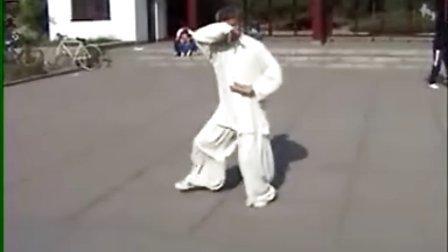 名师 太极拳