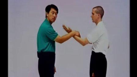 叶问咏春拳体系小念头 CD2