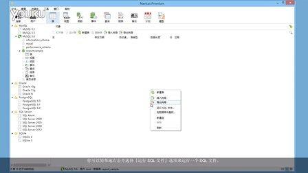 如何在 Navicat 管理工具运行 SQL 文件?(Windows & Linux)