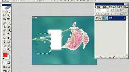 Fhotoshop从头学起视频Photoshop从头学起第08集