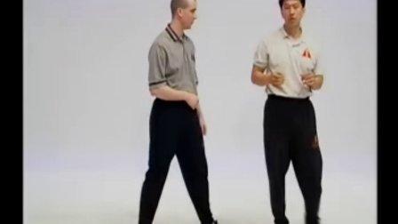 叶问咏春拳体系标指CD1