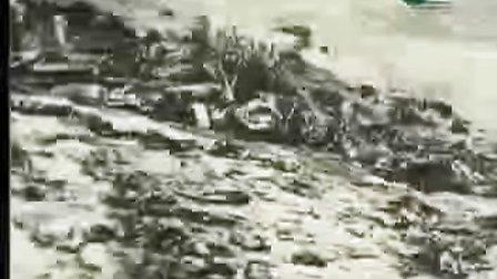 南京大屠杀实证08