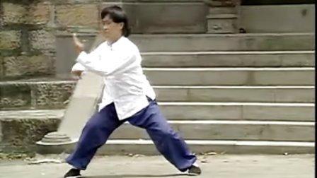 中國武術名拳錄-陳氏太極拳老架 2