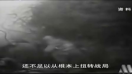 [世界历史].076.第一次世界大战(2)