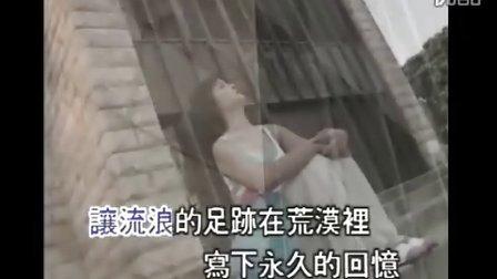 高胜美  - 追梦人 【原人原唱】