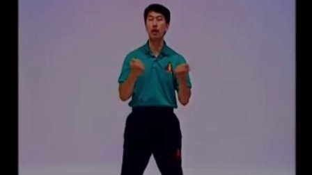 叶问咏春拳体系小念头CD1