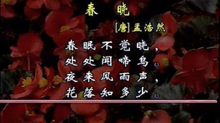 古诗《春晓》解说版